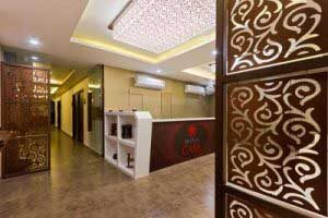 Hotels in Vadodara, Business Hotels Vadodara
